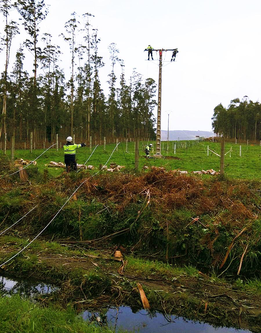 ISASTUR colabora en la reparación de los daños causados por los temporales en Galicia